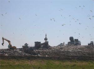LATINA - Invaso S0 della discarica di Montello: nessuna anomalia anche nella fase due degli scavi.