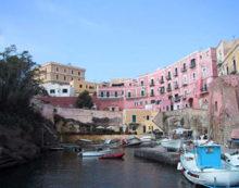 Controlli dei Nas sull'isola di Ventotene: sanzioni e pesce sotto sequestro.