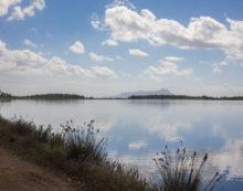 Pesca illegale nel lago di Fogliano, a Latina: i Carabinieri Forestali sequestrano 3 reti.