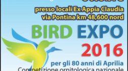 Bird Expo Aprilia, si parte con un concorso di disegno per ragazzi
