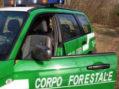 Accusa un malore mentre raccoglie castagne, 51enne ritrovato senza vita nel sud pontino