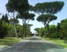 Sigilli alle giostre del parco Falcone e Borsellino di Latina