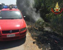 SABAUDIA – Principio d'incendio all'interno del Parco Nazionale del Circeo.