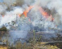 Incendi boschivi, nuovo sistema di videosorveglianza a Terracina
