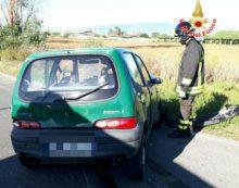 LATINA – Frontale a Borgo Bainsizza, il bimbo di 4 anni è in coma.
