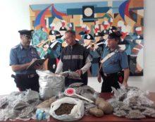 30 chili di marijuana nascosti in casa, arrestato 38enne di Aprilia