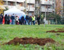 Pomezia, 1000 alberi in più piantati dai bambini della città