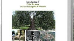 'La lingua di Cori. dizionario corese-italiano italiano-corese', Pietro Vitelli presenta il suo ultimo lavoro.