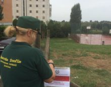 Presunti avvelenamenti di cani nei parchi di Pomezia, le Guardie Zoofile controllano il territorio