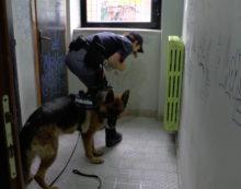 Controlli nelle scuole: la polizia ispeziona il Marconi di Latina