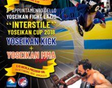 """Alla concessionaria """"Prezioso"""" di Aprilia  domenica 16 dicembre  c'è lo """"Yoseikan Fight Lazio""""."""