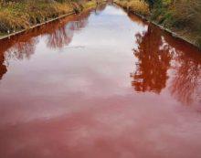 L'acqua del canale di Rio Martino diventa rossa