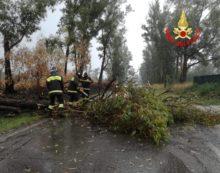 Prosegue l'allerta meteo nel Lazio: centinaia gli interventi tra le province di Roma e Latina.