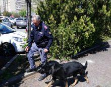 La Polizia di Latina denuncia due persone, per spaccio di droga e guida senza patente.