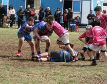 Tanti impegni e ottime prove per le squadre giovanili dell'Asd Aprilia Rugby