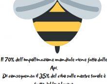 """Giornata internazionale delle api, ad Aprilia un evento in piazza con """"Ape d'Oro"""""""