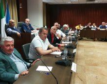 Cisterna, approvato il piano rifiuti: verso un impianto di compostaggio locale