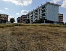 """Aprilia – """"Via Istria: dalla caccia al tesoro ai cerchi nel grano, non c'è futuro per il verde"""""""