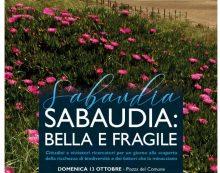 """""""Sabaudia, bella e fragile"""". Una mini rassegna per scoprire il fascino del litorale"""