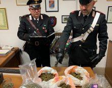 Oltre un chilo di marijuana in casa, 22enne di Sabaudia in arresto